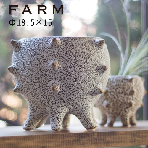 FARM テオドラ18 (41009)