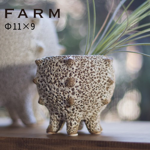 FARM テオドラ11 (41010)