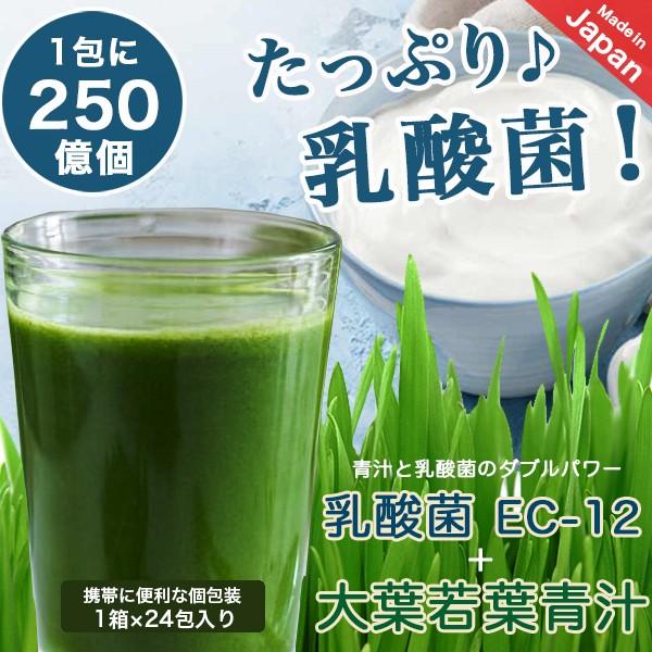 青汁 乳酸菌 (まずはお試し!) 乳酸菌250億個含有 ...