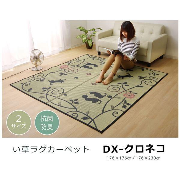 い草ラグカーペット 2畳 正方形 かわいい 猫 ねこ...