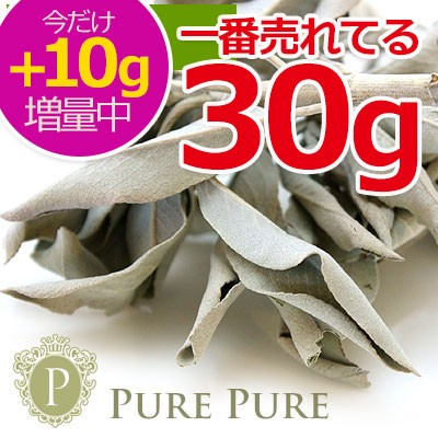 【10g増量中】 ホワイトセージ 浄化用 今だけ40g ...