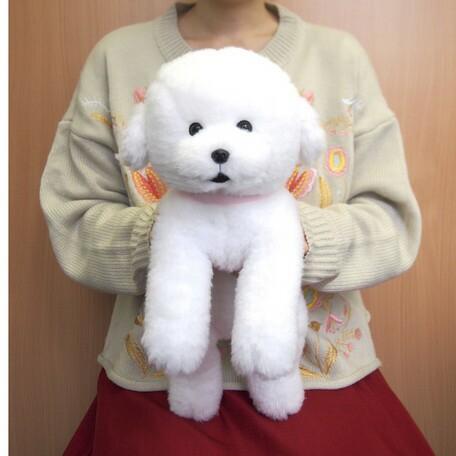 ひざわんこ ビションフリーゼ (P-4132-1) (犬...