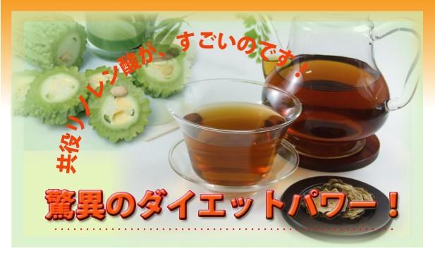 野生ゴーヤ茶100g【送料無料】