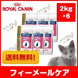 【ロイヤルカナン】猫用 ベッツプラン フィーメー...