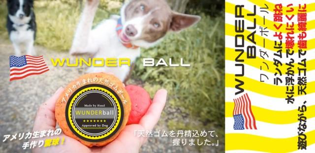 ワンダーボール (Lサイズ・約8cm)