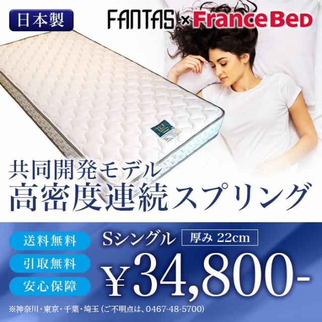 [送料無料]ZT-FA-033 フランスベッドシングルマ...
