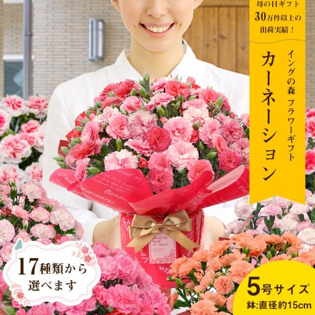 母の日 ギフト プレゼント 花 カーネーション5号 選べるカーネーションは17種類 こだわりラッピング 全国送料無料 沖縄・離島にはお届け