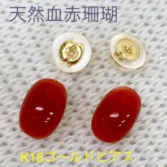 鑑定済み 天然血赤珊瑚 K18ゴールドピアス