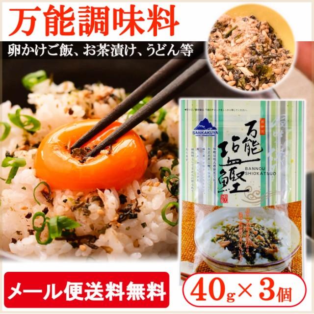 【送料無料】 ネコポス 万能塩鰹 40g 3個セット ...