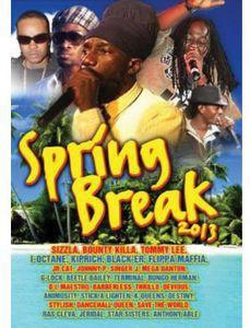 SPRING BREAK 2013 (輸入盤DVD)