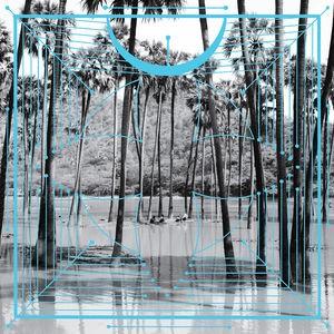Four Tet / Pink【輸入盤LPレコード】