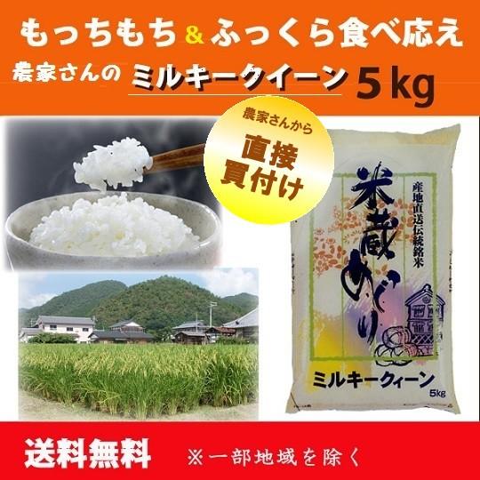 送料無料【農家さん直接買付け】滋賀県産ミルキー...