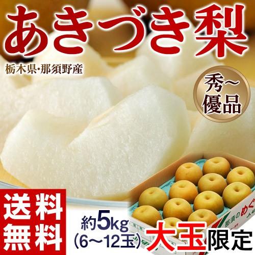 栃木県那須野産「あきづき梨」 約5kg(大玉 6〜12玉) 優〜秀品 ※常温 送料無料