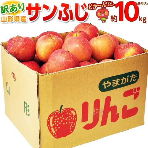 りんご リンゴ 送料無料 山形産 訳あり サンふじ ...