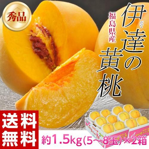 福島県産 『伊達の黄桃』 約1.5kg(5〜8玉)×2...