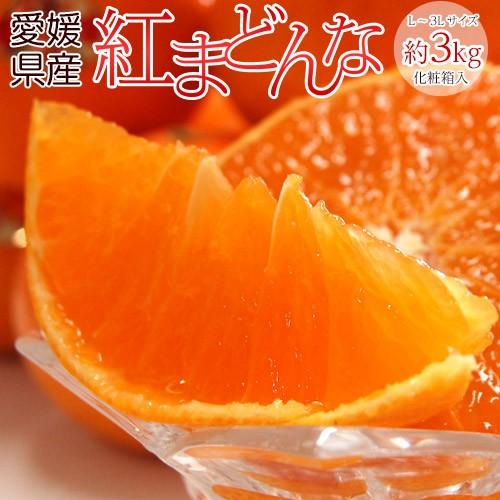 ギフト 柑橘 送料無料 愛媛県産 紅まどんな 化粧...
