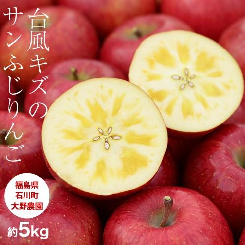 りんご リンゴ 送料無料 訳あり 台風キズ 大野農...