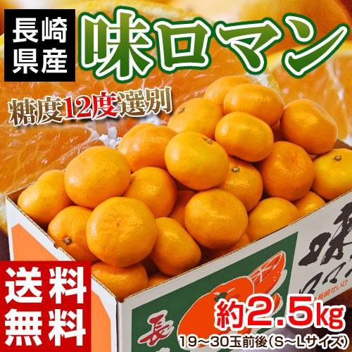 みかん 送料無料 長崎県産みかん 味ロマン 約2.5k...