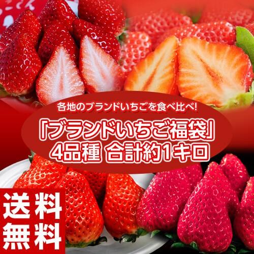 ブランドいちご福袋 4品種 合計約1kg (佐賀「いち...
