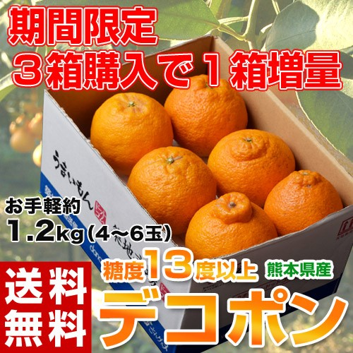 柑橘 デコポン 送料無料 熊本県産 「デコポン」 ...