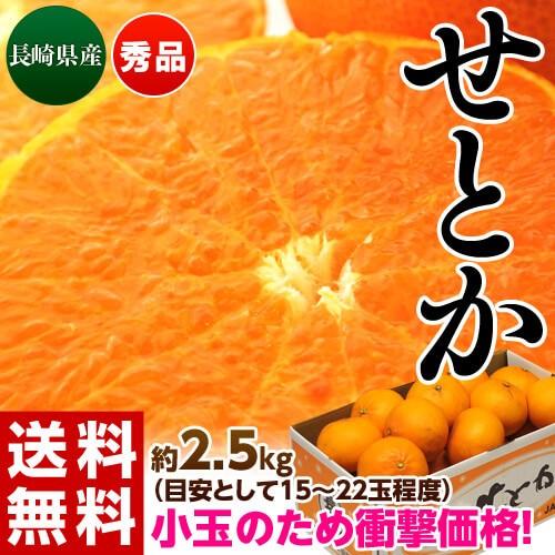 【相場下落】 柑橘 送料無料 長崎 せとか バラ詰...