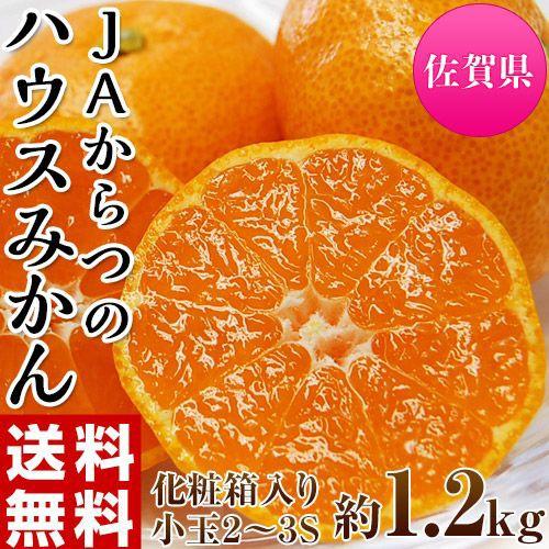 中元 ギフト 柑橘 みかん JAからつ 小玉みかん 2〜3Sサイズ 約1.2キロ 化粧箱 送料無料