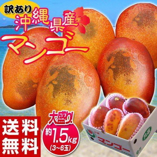 訳あり 沖縄マンゴー 大ボリュームの約1.5kg(3...