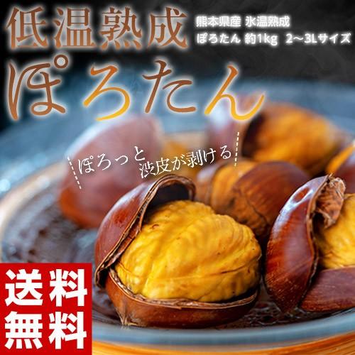 JA菊池 『低温熟成 ぽろたん』熊本県産 栗 2L〜3Lサイズ 約1kg ※冷蔵 産地直送 送料無料