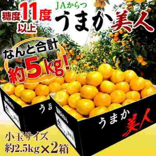 高糖度みかん みかん 佐賀県産 JAからつ うまか美人 約2.5kg×2箱 2S〜3Sサイズ 送料無料