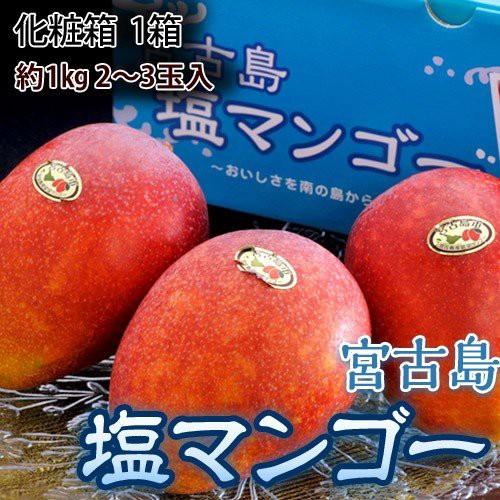 マンゴー 宮古島産 塩マンゴー 化粧箱 約1kg (2...