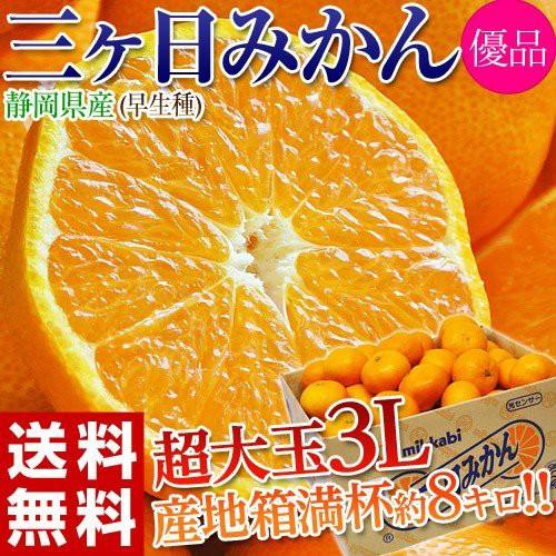 みかん ミカン 蜜柑 柑橘 静岡県 三ケ日 早生 約8...