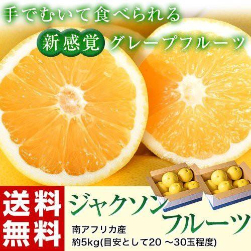 柑橘 ジャクソンフルーツ 南アフリカ産 約5kg(目...