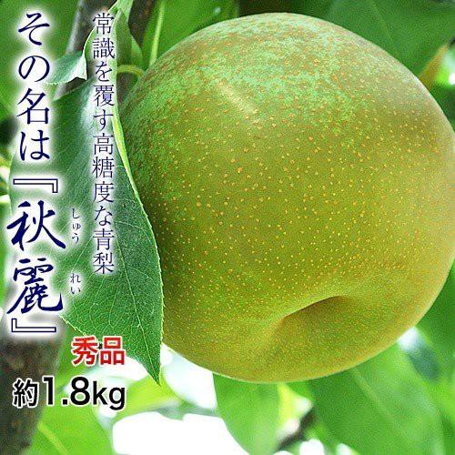 梨 なし 熊本県産 秋麗梨 秀品 約1.8kg (5〜7玉...