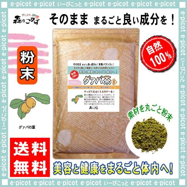 B グァバ茶 (粉末) パウダー 500g 送料無料 森の...
