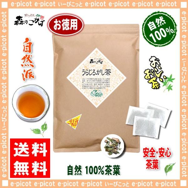 7 国産 うらじろがし茶 (3g×80p)「ティーパック...