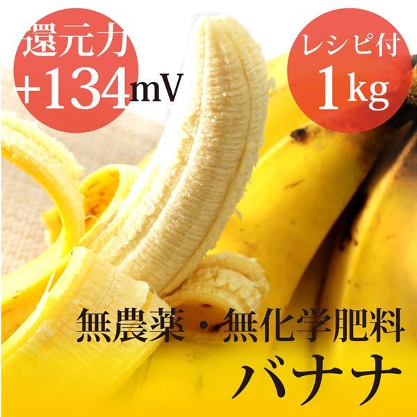 バランゴンバナナ 1kg フェアトレード 無農薬・無...