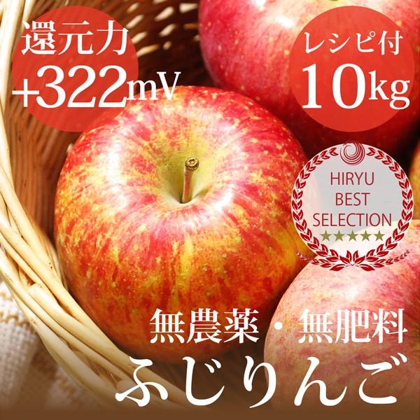 リンゴ ふじりんご 10kg 自然栽培(無農薬・無肥...