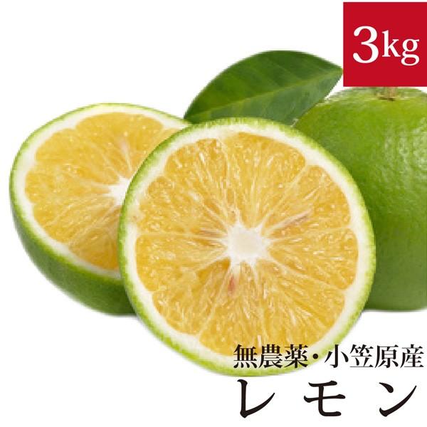 小笠原の菊池レモン3kg 無農薬・国産【皮ごと食べ...