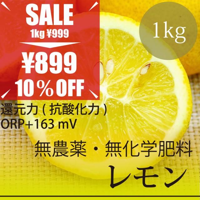 希少! 無農薬レモン 1kg 熊本県産 無農薬・無化...