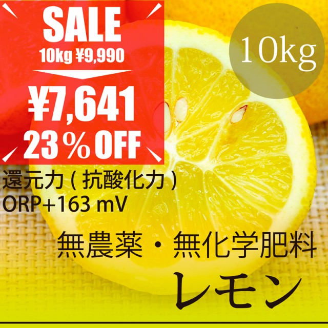 希少! 無農薬レモン 10kg 熊本県産 無農薬・無化...