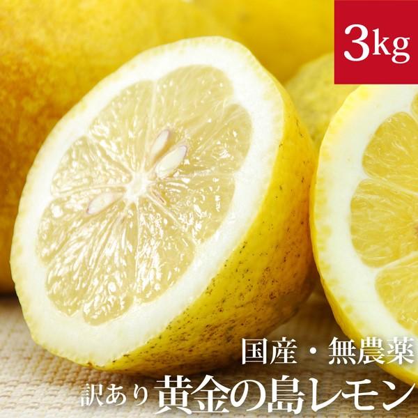 訳あり黄金の島レモン 3kg  自然栽培