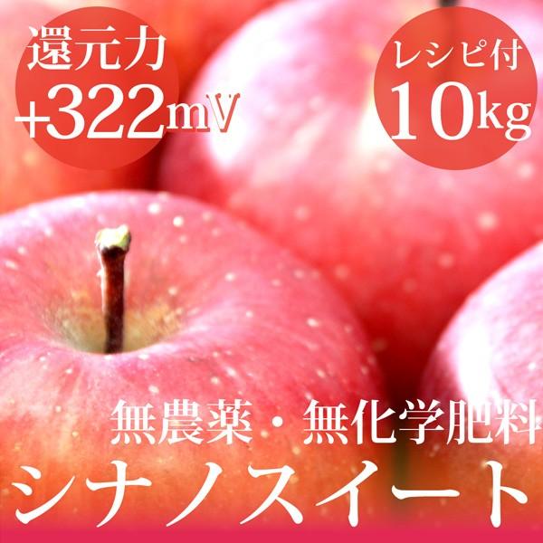 リンゴ シナノスイート10kg 無農薬・無化学肥料  ...