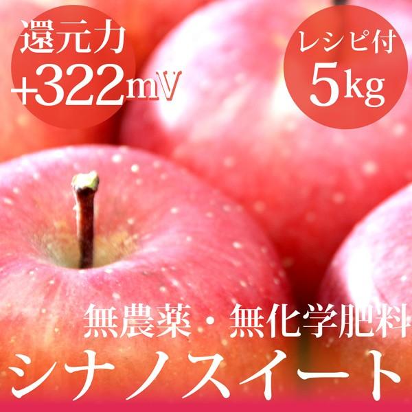 リンゴ シナノスイート5kg 無農薬・無化学肥料  ...