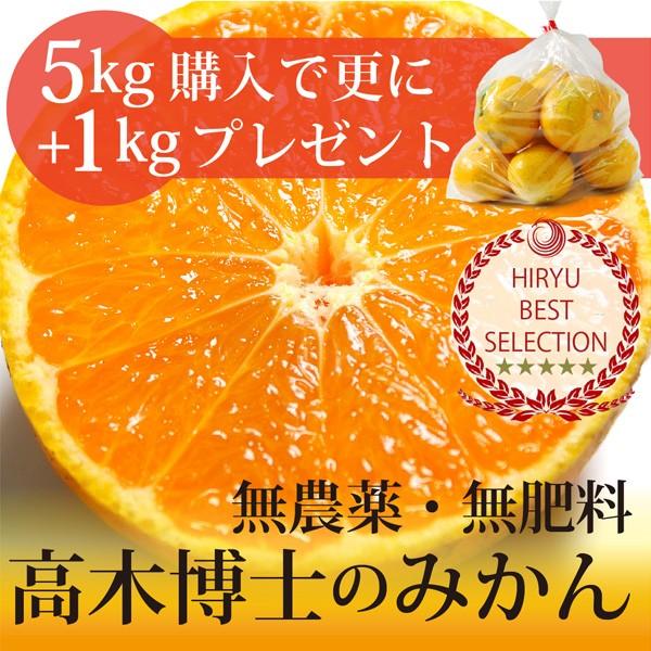 高木博士の樹上完熟みかん 5kg+1kgおまけ! 自然...