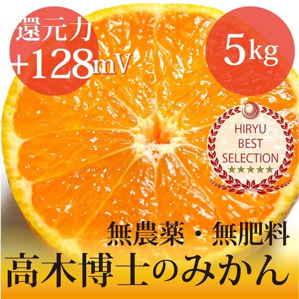 高木博士の樹上完熟みかん 5kg  自然栽培(無農薬...
