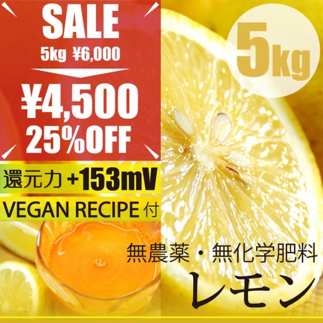レモン5kg 無農薬・無化学肥料 ヴィーガンレシピ...