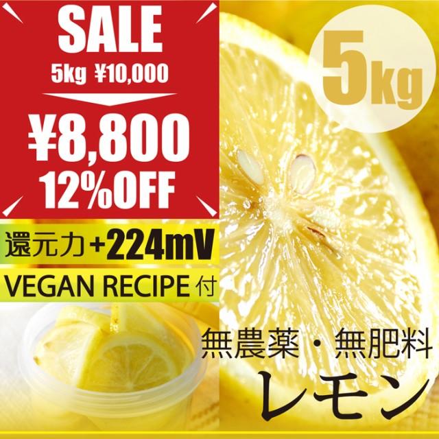 自然栽培レモン 5kg 広島県産 無農薬・無肥料・...
