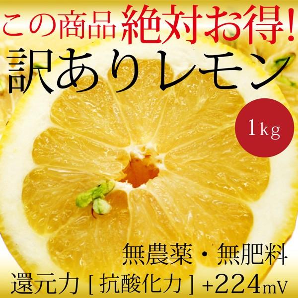 自然栽培 訳ありレモン 1kg 広島県産 無農薬・無...