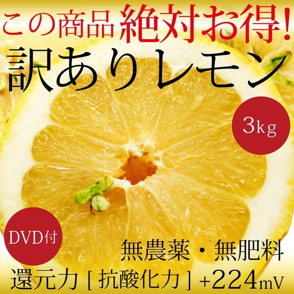 自然栽培 訳ありレモン 3kg 広島県産 無農薬・無...
