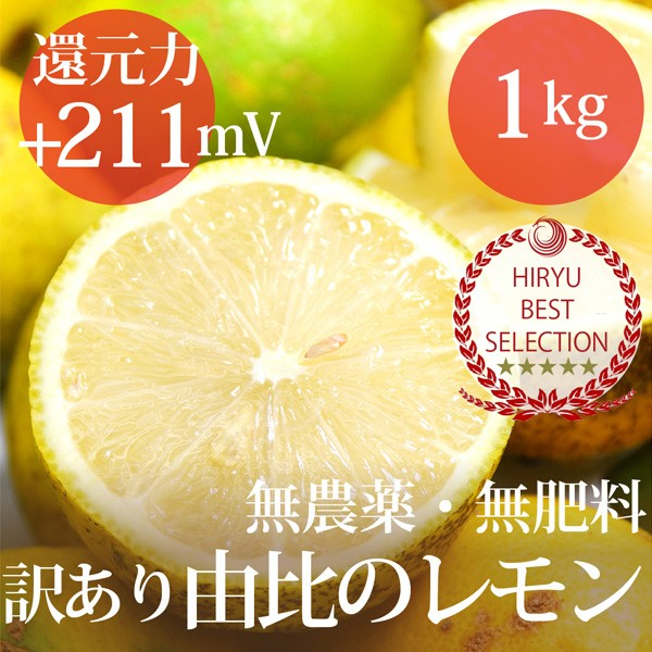 訳あり由比のレモン 1kg 自然栽培(無農薬・無肥料...